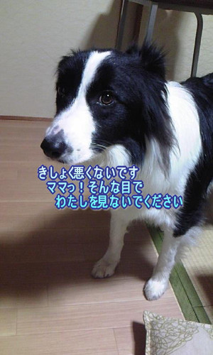 Image2_2
