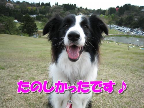 Img_1556_convert_20120430210852