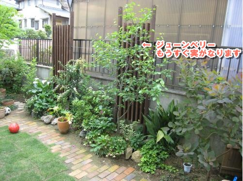 Img_1703_convert_20120511222351
