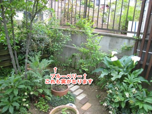 Img_1705_convert_20120511222436